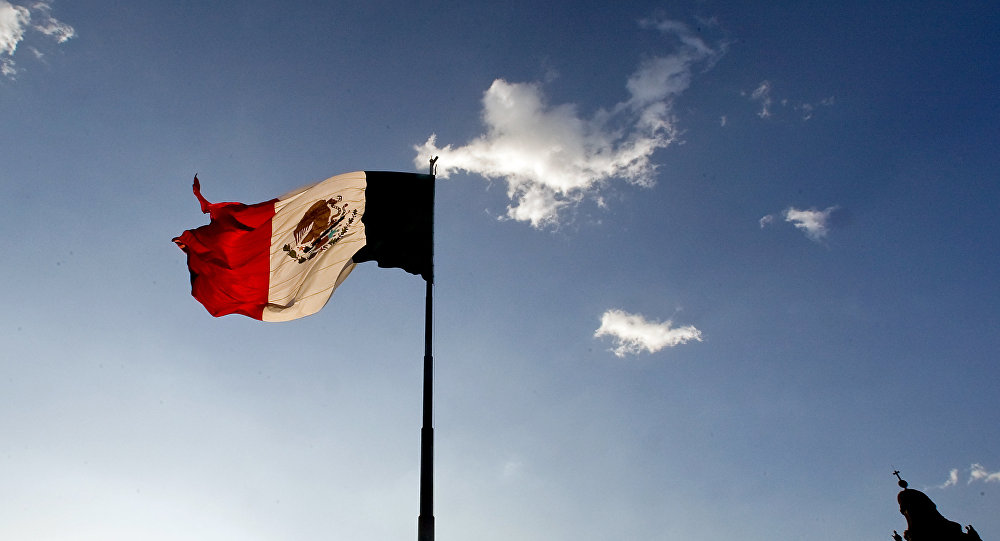 Mexico has no evidence of foreign meddling in election process
