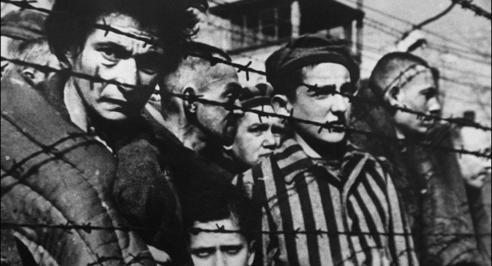 Romanian Minister Apologizes for Comparing Pig Slaughter to Auschwitz Murders