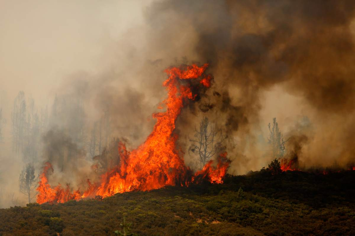 showing extreme fire behavior - HD1200×800