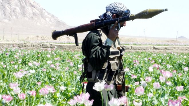 Afghanistan war: US and Afghan Taliban to start partial truce
