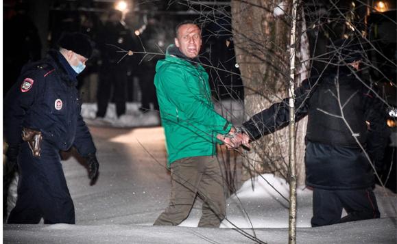 The Navalny Ideal