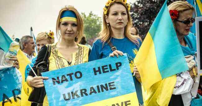 Ukraine will not join NATO in the next decade - former US ambassador to Kiev