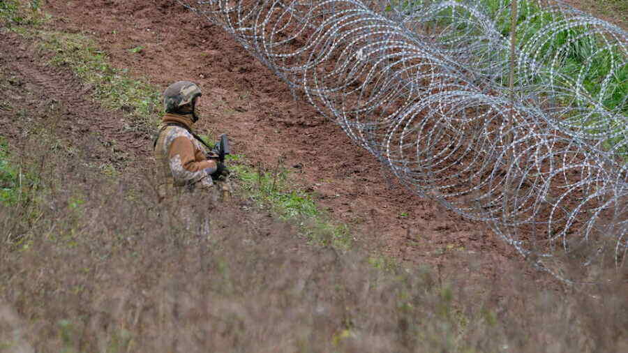Amnesty International condemns Poland's treatment of migrants on border with Belarus